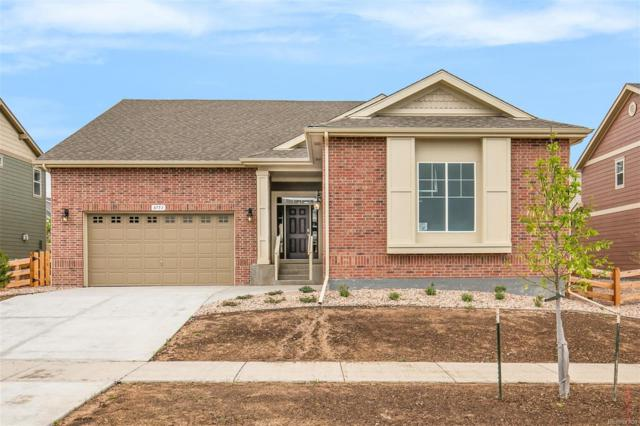 8753 Crestone Street, Arvada, CO 80007 (#5020113) :: The HomeSmiths Team - Keller Williams