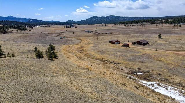 315 Empire Road, Florissant, CO 80816 (MLS #5042877) :: Bliss Realty Group