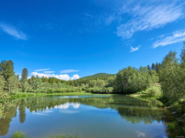 Hughesville Road, Black Hawk, CO 80422 (MLS #5049971) :: 8z Real Estate