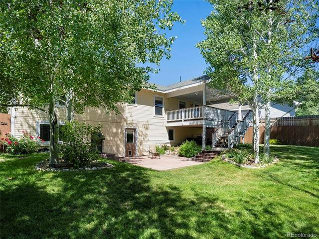 40179 Lindsay Drive, Steamboat Springs, CO 80487 (#5065209) :: The DeGrood Team