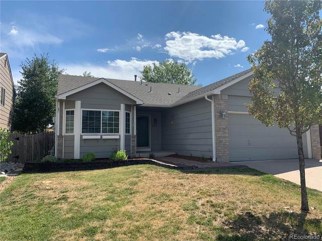 23272 Blackwolf Way, Parker, CO 80138 (#5066834) :: The Gilbert Group