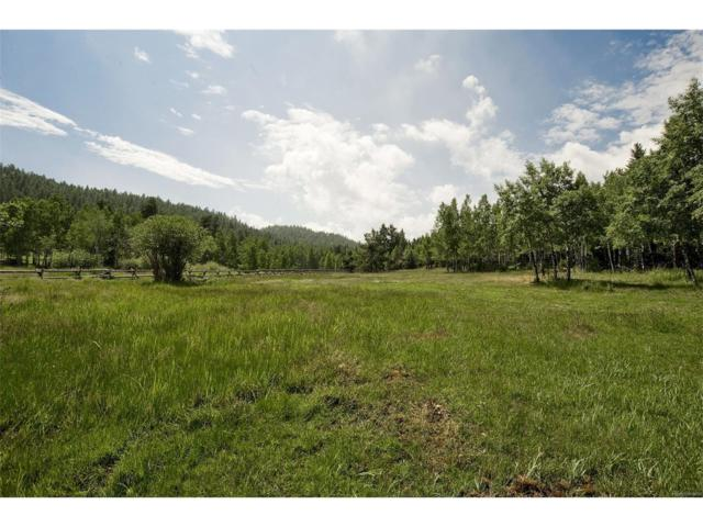 6472 Little Cub Creek Road, Evergreen, CO 80439 (MLS #5082777) :: 8z Real Estate