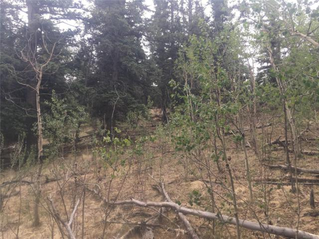 Dory Hills Road, Black Hawk, CO 80427 (MLS #5084927) :: 8z Real Estate