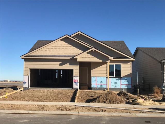 10313 11th Street, Greeley, CO 80634 (#5090314) :: The Heyl Group at Keller Williams