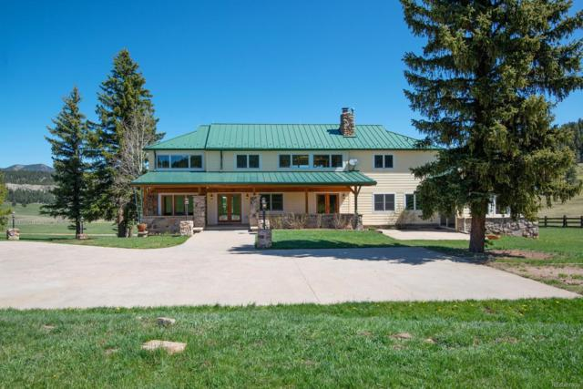 5810 Bluebell Lane, Evergreen, CO 80439 (#5093349) :: The Pete Cook Home Group
