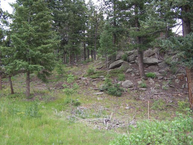 9256 Broken Bow Ranch Road, Morrison, CO 80465 (#5093543) :: James Crocker Team