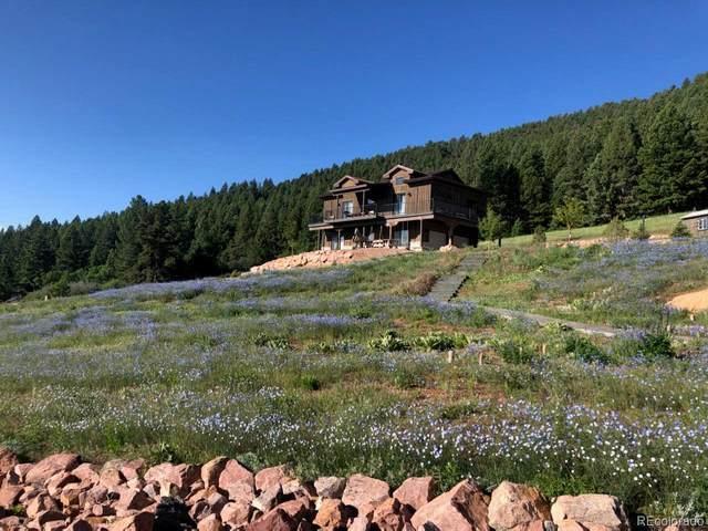 15367 Sierra Pines Lane, Larkspur, CO 80118 (MLS #5117334) :: 8z Real Estate