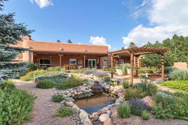 20060 Capella Drive, Monument, CO 80132 (MLS #5130031) :: 8z Real Estate