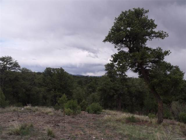 00 35th Trail, Cotopaxi, CO 81223 (MLS #5137504) :: 8z Real Estate