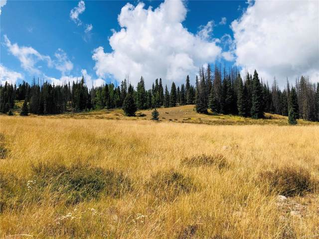 Lot 47 Cumbres Sub, Antonito, CO 81120 (#5166527) :: The Peak Properties Group