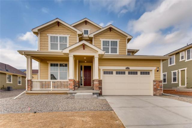 16363 Columbine Street, Thornton, CO 80602 (#5188667) :: Sellstate Realty Pros