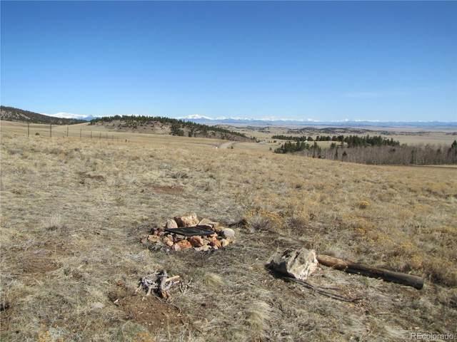 8256 Ranch Road, Hartsel, CO 80449 (MLS #5197757) :: 8z Real Estate