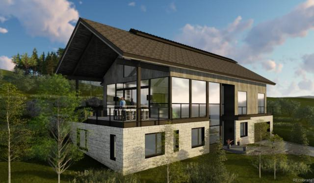 1136 Steamboat Boulevard, Steamboat Springs, CO 80487 (#5214991) :: Structure CO Group