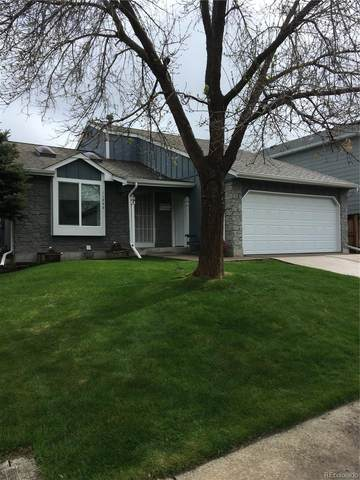 11348 W Maplewood Drive, Littleton, CO 80127 (#5233142) :: The DeGrood Team
