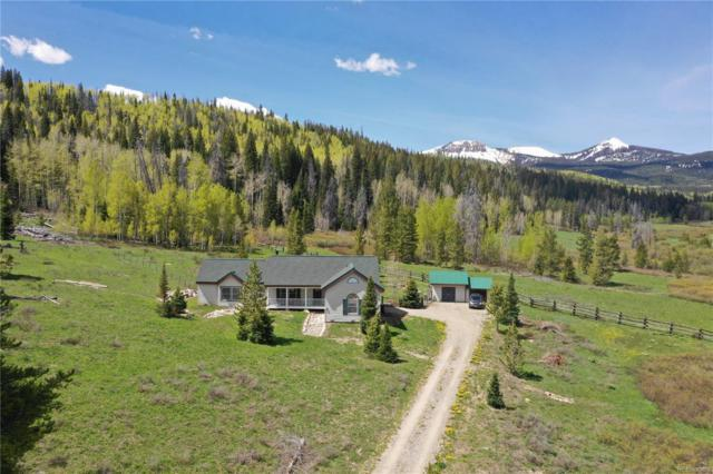 23043 County Road 62, Clark, CO 80428 (#5240190) :: Bring Home Denver with Keller Williams Downtown Realty LLC