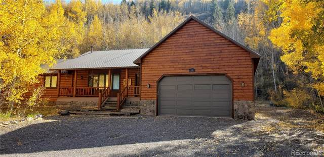 6 S Bear Paw Court, Antonito, CO 81120 (#5247501) :: The DeGrood Team
