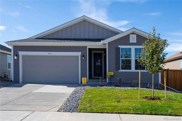 859 N Vandriver Way, Aurora, CO 80018 (#5252866) :: Wisdom Real Estate