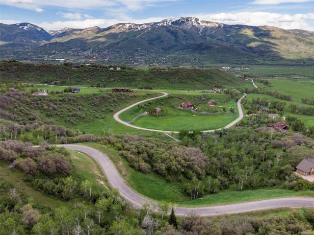 35540 Humble Road, Steamboat Springs, CO 80487 (#5289331) :: Mile High Luxury Real Estate