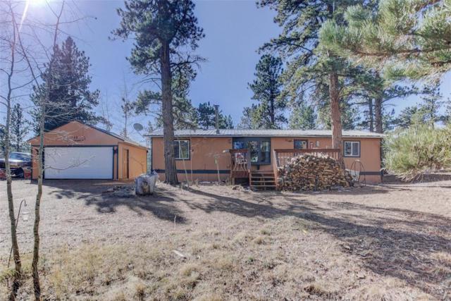 102 El Lobo Lane, Bailey, CO 80421 (#5301929) :: Bring Home Denver
