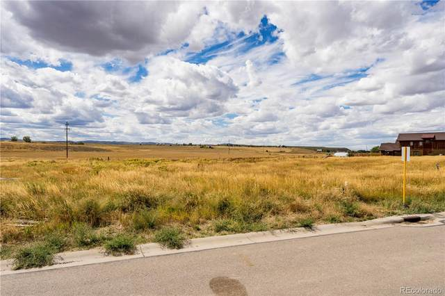 894 Dry Creek South Road, Hayden, CO 81639 (#5344729) :: The Brokerage Group