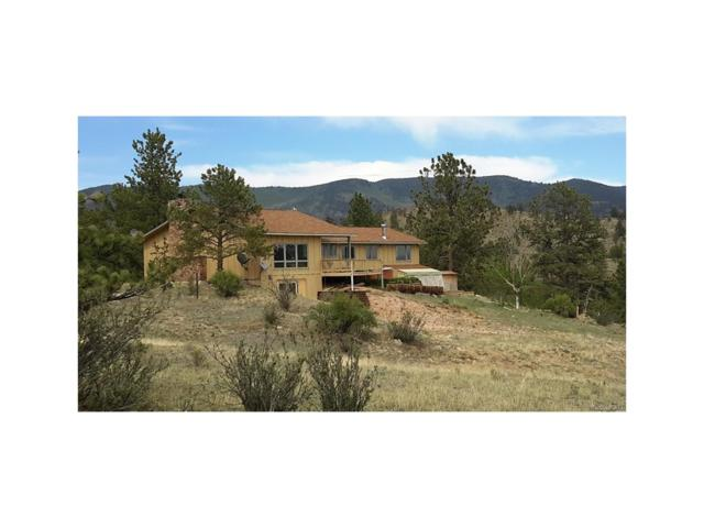 30893 County 77 Road, Lake George, CO 80827 (MLS #5365209) :: 8z Real Estate