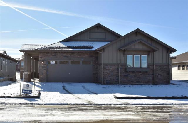 5042 W 109th Circle, Westminster, CO 80031 (#5366544) :: Bring Home Denver