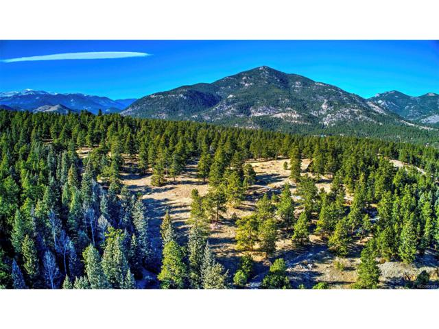 Golden Willow Road, Evergreen, CO 80439 (MLS #5366871) :: 8z Real Estate