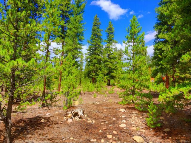70 Alpine Drive, Leadville, CO 80461 (MLS #5373982) :: 8z Real Estate