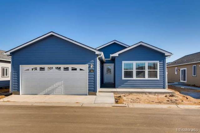 7885 Cattail Green, Frederick, CO 80530 (#5384048) :: Bring Home Denver with Keller Williams Downtown Realty LLC