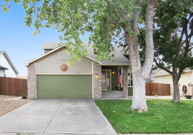 624 4th Street, Frederick, CO 80530 (MLS #5388261) :: Kittle Real Estate