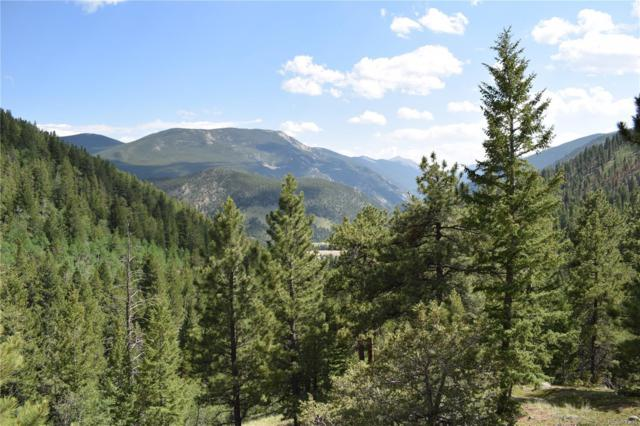 Main Mine: Allen Placer - 2173 12 Acresuu 21-3-74 Pt 31, Empire, CO 80438 (#5399548) :: Bring Home Denver with Keller Williams Downtown Realty LLC