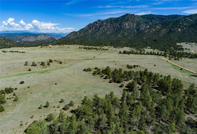 000 Ponderosa Trail, Canon City, CO 81212 (#5416936) :: Bring Home Denver with Keller Williams Downtown Realty LLC