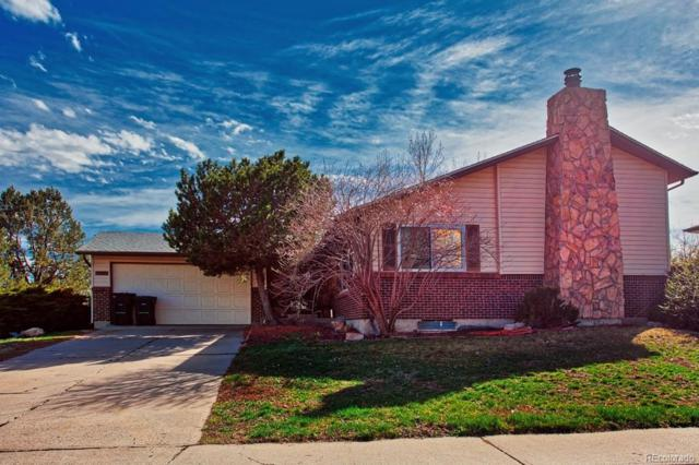 11132 Clermont Circle, Thornton, CO 80233 (#5418818) :: The Peak Properties Group