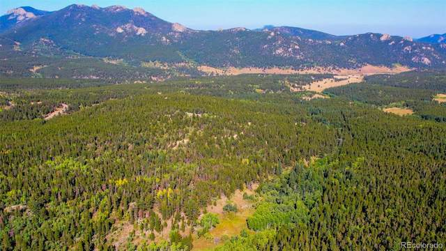646 Eagle Way, Black Hawk, CO 80422 (#5421880) :: iHomes Colorado
