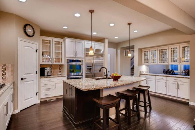 10640 Sundial Rim Road, Highlands Ranch, CO 80126 (#5439756) :: The Pete Cook Home Group