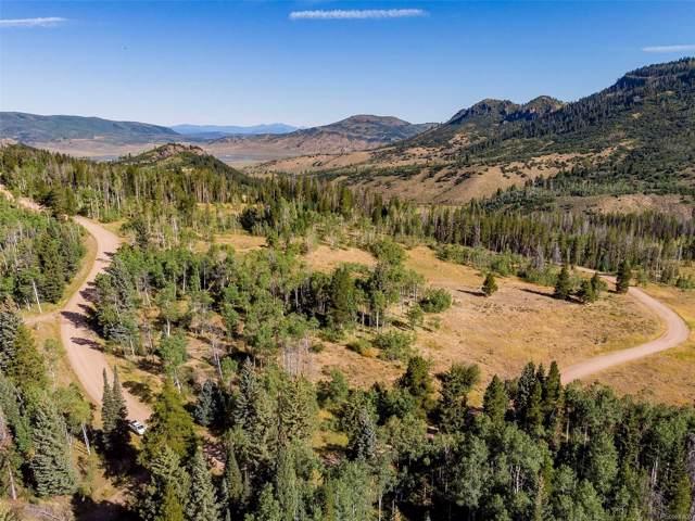 31620 Green Ridge Drive, Oak Creek, CO 80467 (MLS #5450228) :: 8z Real Estate
