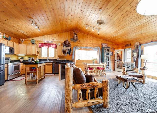 50 Loch Lomond Road, Idaho Springs, CO 80452 (#5450380) :: The Griffith Home Team