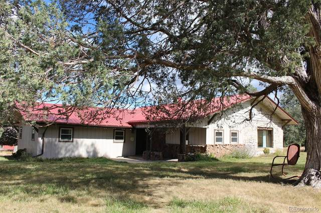 2228 County Road 47, Howard, CO 81233 (#5460262) :: The DeGrood Team