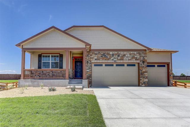 15509 Quince Circle, Thornton, CO 80602 (#5461102) :: The City and Mountains Group