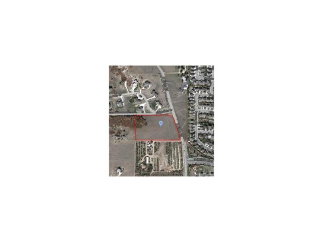 201 S Ridge Road, Castle Rock, CO 80104 (MLS #5481410) :: 8z Real Estate