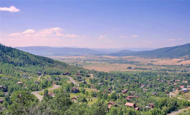 2820 Laurel Lane, Steamboat Springs, CO 80487 (#5487908) :: The Healey Group