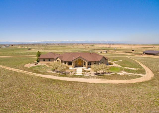 14211 County Road 22, Fort Lupton, CO 80621 (MLS #5491899) :: 8z Real Estate