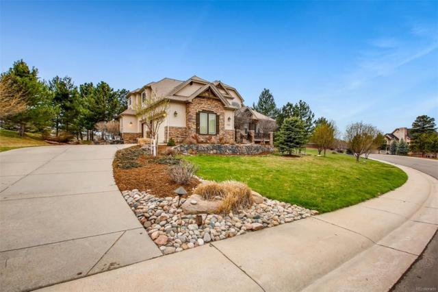 8690 Windhaven Drive, Parker, CO 80134 (#5498539) :: The DeGrood Team