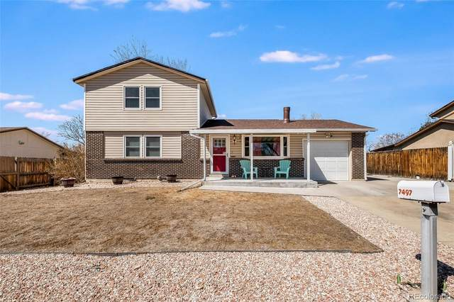 7497 Newland Street, Arvada, CO 80003 (#5508870) :: Bring Home Denver with Keller Williams Downtown Realty LLC