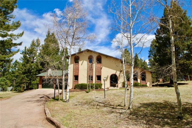 190 High View Circle, Woodland Park, CO 80863 (#5512580) :: Wisdom Real Estate