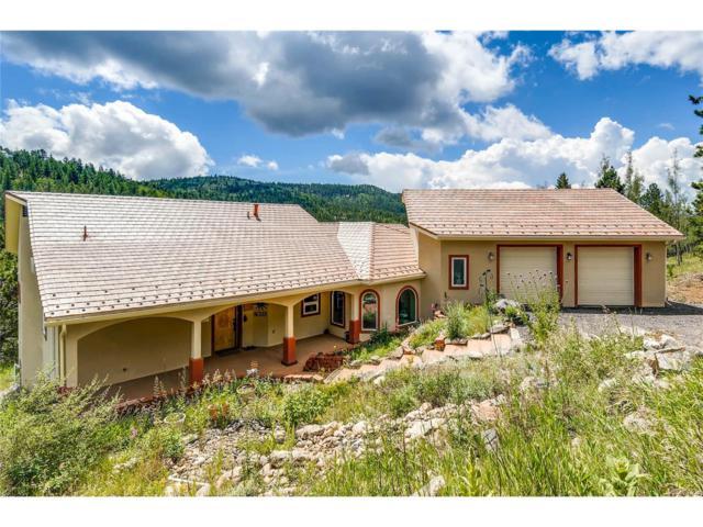 2665 Coyote Circle, Black Hawk, CO 80422 (MLS #5517758) :: 8z Real Estate