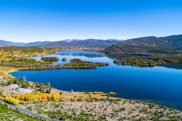 650 Canal View Drive, Grand Lake, CO 80447 (#5521478) :: The Scott Futa Home Team