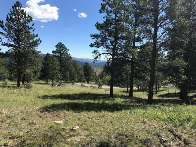 15146 Wilson Peak Trail, Pine, CO 80470 (#5532306) :: The DeGrood Team