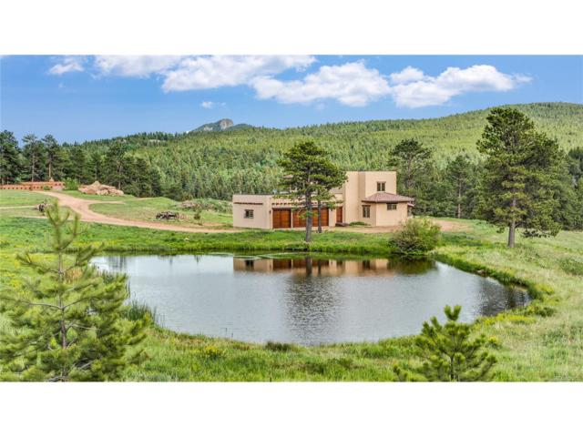 28098 Green Valley Lane, Conifer, CO 80433 (#5547273) :: The Peak Properties Group