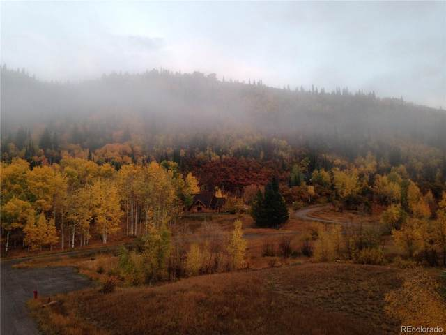 31515 Gooseberry Lane, Steamboat Springs, CO 80487 (#5577176) :: Mile High Luxury Real Estate